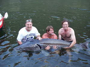 Hells Canyon Sturgeon