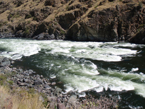 Hells Canyon Rapid