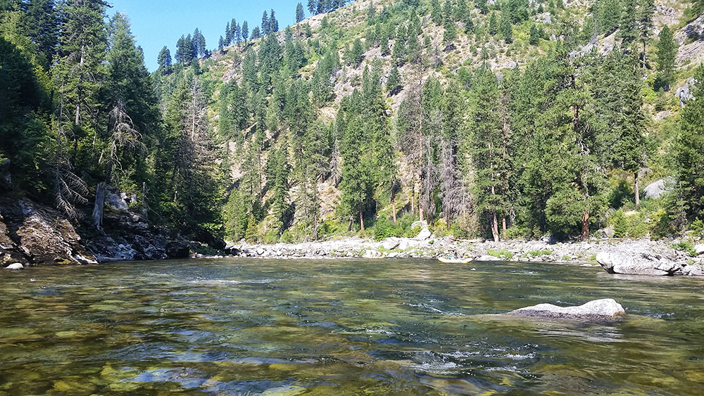 selway river wilderness expedition