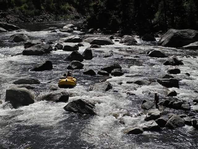 selway river trip