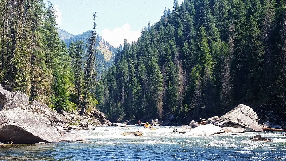 Selway River Expedition