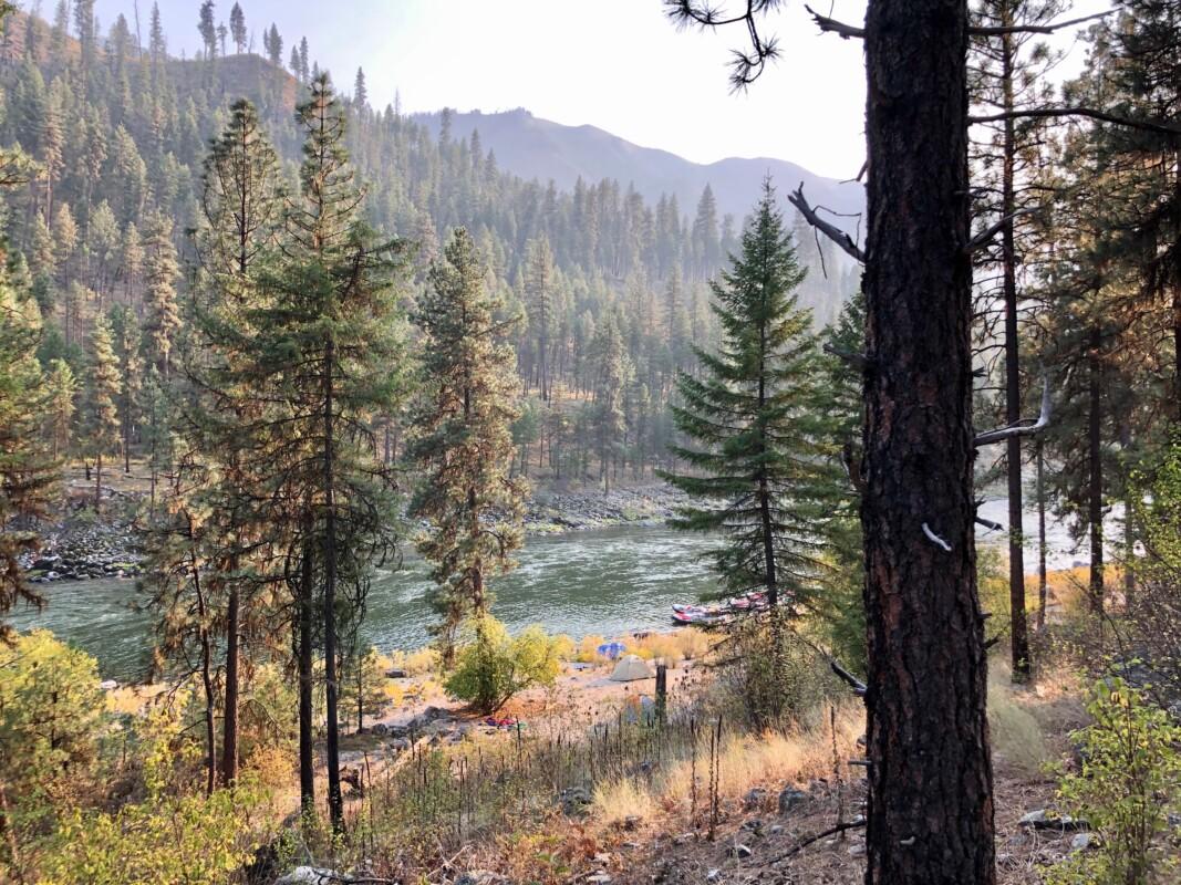 camp pic main salmon river
