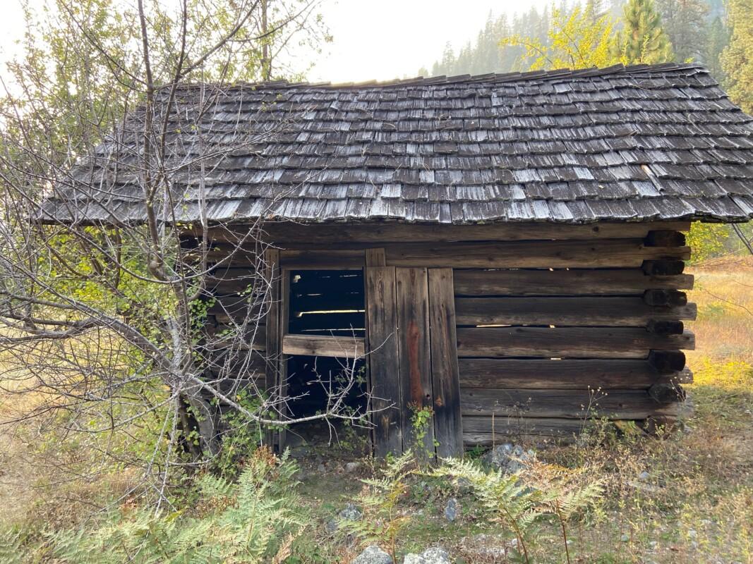 historic cabin main salmon 3